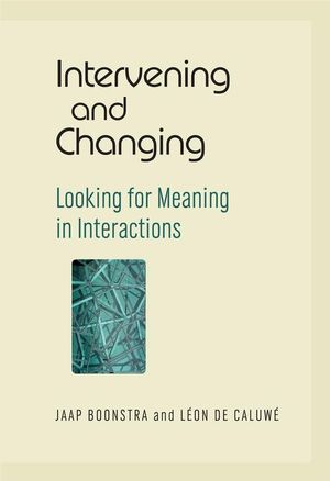 Intervening and changing - Looking for meaning